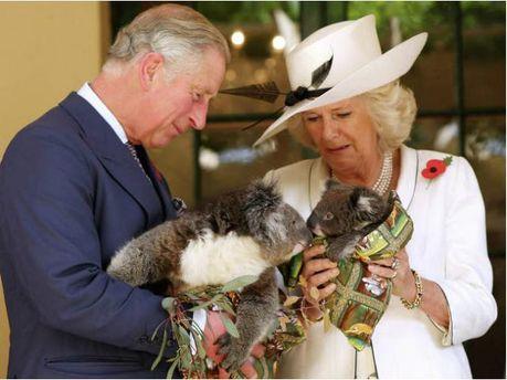 Принц Чарльз и герцогиня Камилла