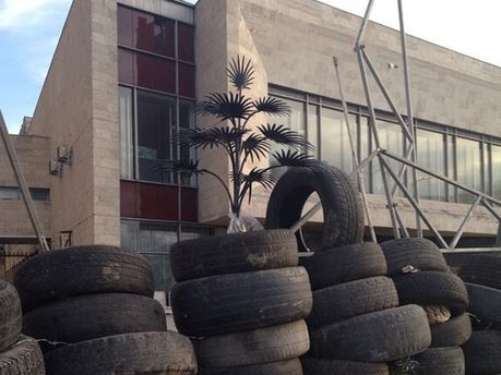 Пальма Мерцалова  на барикадах
