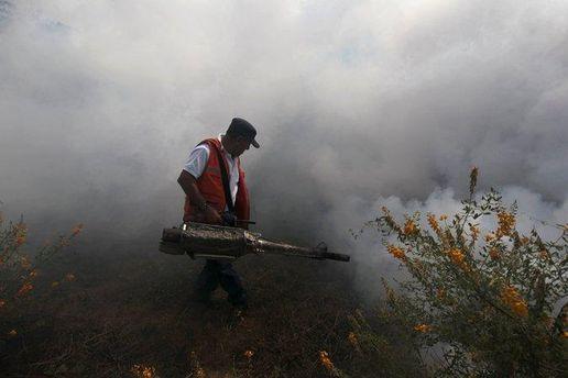 Работник проводит дезинфекцию в парке в Сальвадоре