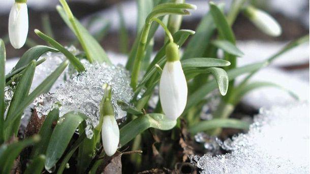 Народний прогноз на весну