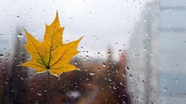 Идет настоящая осень