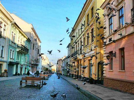 Самым безопасным из 26 региональных центров Украины оказались Черновцы