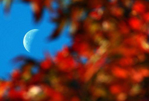 Починається астрономічна осінь