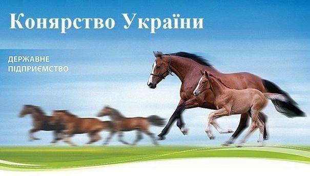 Навзятке в $30 тыс. схвачен босс ГП «Коневодство Украины»