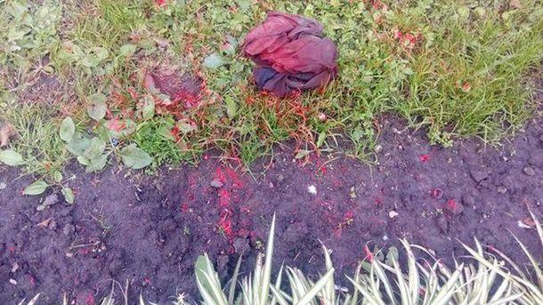 Вандали облили червоною фарбою пам'ятник Володимиру Великому