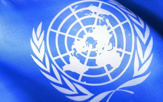 Організація Об'єднаних Націй