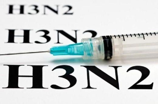 Вирус А/Гонконг (H3N2) может прийти во время первой волны гриппа