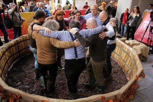 Львовский праздник сыра и вина-2013