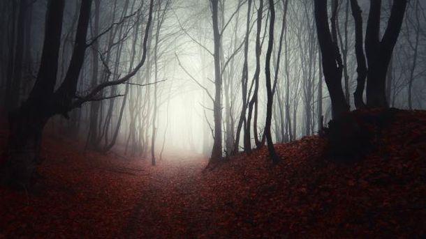 Осень в Украине