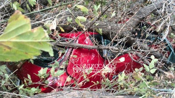 ВОдессе пенсионерка погибла под рухнувшим деревом