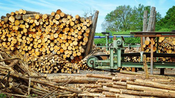 Деревообробна промисловість