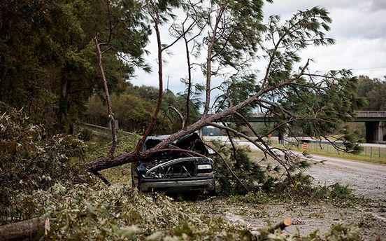 Негода охопила всю Україну: рятувальники радять не ходити під деревами