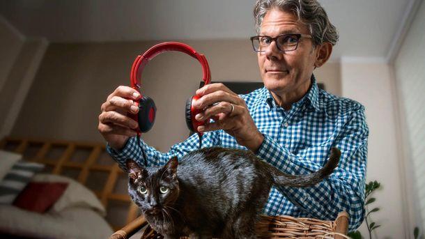 Автор записал музыкальный диск для кошек