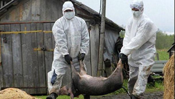 ВУкраинском государстве создадут еще одну полицию— ветеринарную
