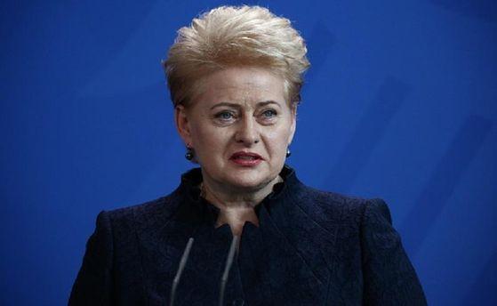 Президент Литвы Даля Грибаускайте анонсировала приезд в государство Украину