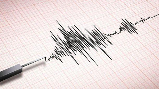 Всети интернет появились первые видеозаписи мощного землетрясения в новейшей Зеландии