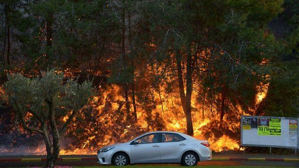 Израиль наградил украинских спасателей запомощь воперации потушению пожаров— Порошенко