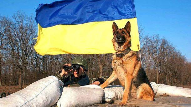 ВСУ установили блокпост наокраине Новолуганского
