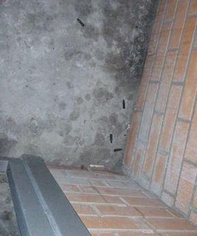 ВХарькове устроили стрельбу сбалкона многоэтажки