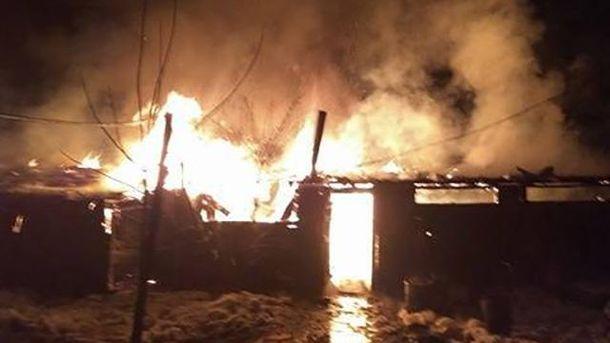 ВоЛьвове дотла сгорел приют для животных. 300 голодных собак— наулице