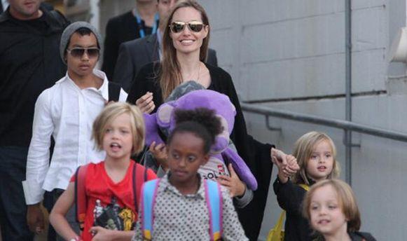 Анджеліна Джолі нагодувала дітей павуками і цвіркунами
