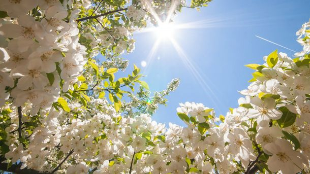 У перші дні березня буде по-весняному сонячно