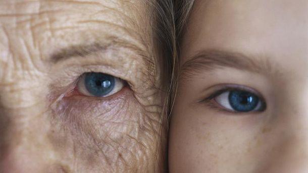 Голандсике ученые разработали препарат против старения, испытав его намышах