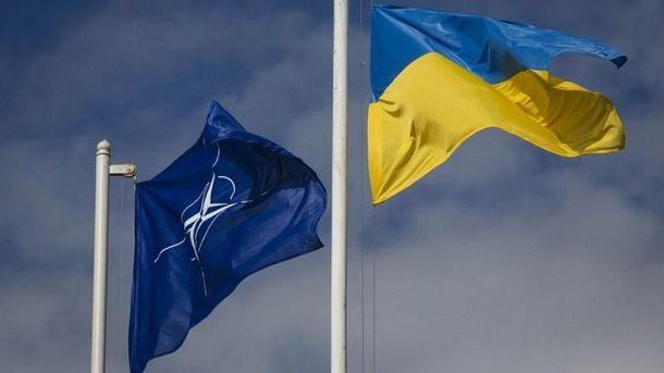 Сотрудники НАТО хотят увидеться сТиллерсоном как можно скорее