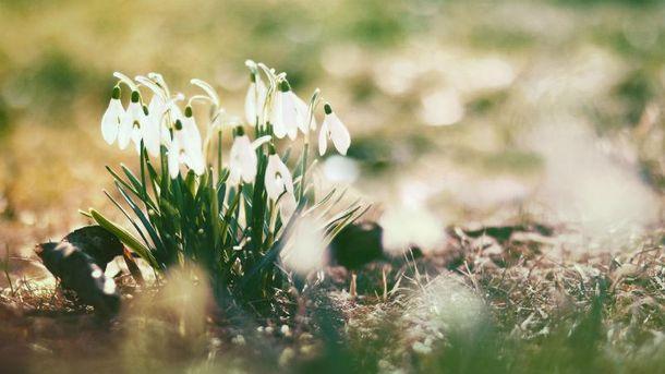 Прогноз погоди на 2 травня: майже по всій Україні буде спекотно, на заході – заморозки і дощі