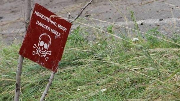 Мировой лидер поколичеству погибших отпротивотанковых мин