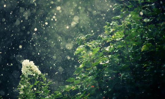 Прогноз погоди на 22 травня: в Україні дощитиме
