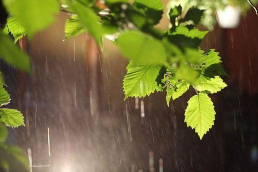 Прогноз погоди на 25 травня: дощі потроху відступають