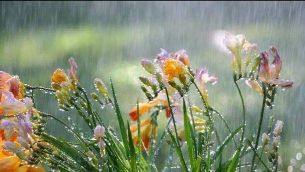 Прогноз погоди на 31 травня: попри спеку в Україні пройдуть дощі та грози