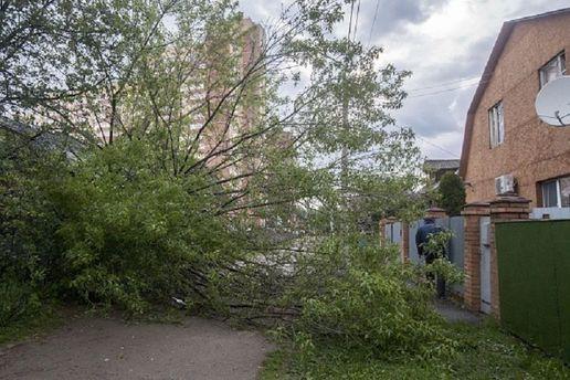 МЗС: Від урагану в Підмосков'ї загинув українець