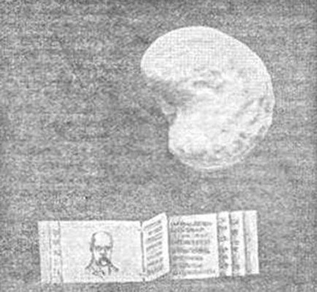 Картинки по запросу микроминиатюрный кобзар