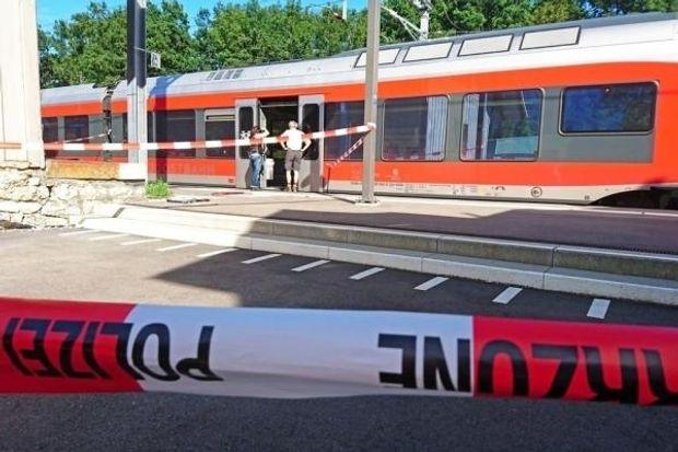 Поліція, Швейцарія, напад, потяг