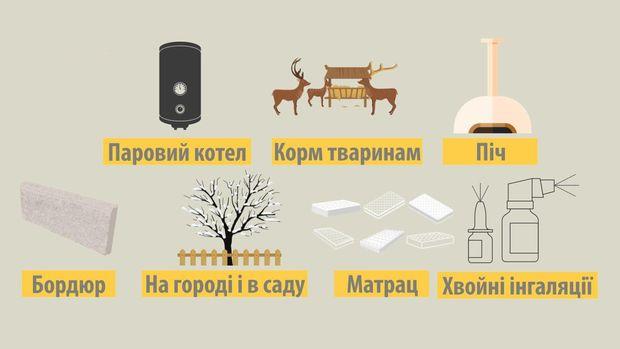 Способи використати новорічну ялинку після свят: корисні поради (ВІДЕО)