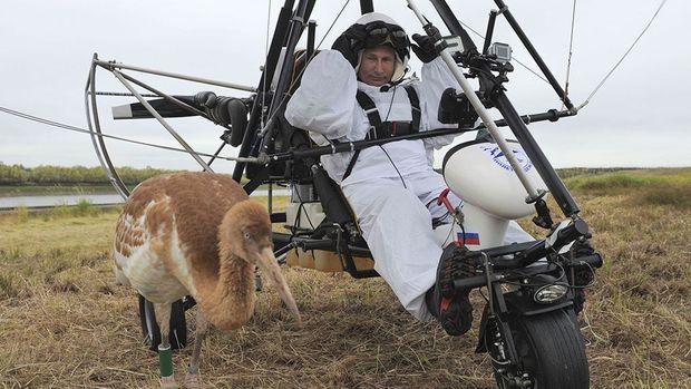 Путін на дельтаплані, 2012 рік