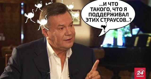 Украинские прокуроры хотят допросить Януковича в Межигорье возле страусов - Цензор.НЕТ 9509